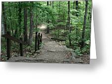 Down The Trail Greeting Card by CGHepburn Scenic Photos