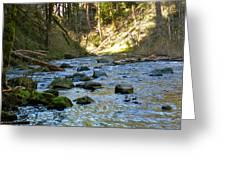 Downstream 2 Greeting Card