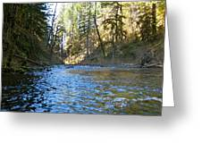 Downstream Greeting Card