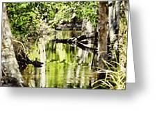 Downstream Reflections Greeting Card