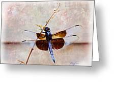 Dragonfly Clinging Greeting Card