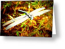 Dragonfly Droid Greeting Card