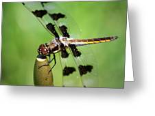 Dragonfly In Black 2 Greeting Card