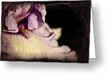 Drama In Purple Greeting Card