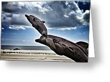 Dramatic Dolphins Greeting Card
