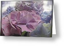 Dream Hydrangeas Greeting Card