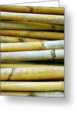 Dried Canes Greeting Card