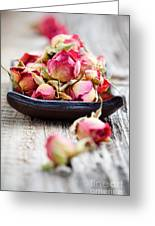 Dried Rose Buds Greeting Card