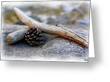 Drift Wood Greeting Card