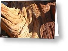 Driftwood 1 Greeting Card