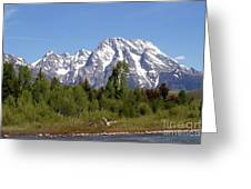 Driftwood And The Grand Tetons Greeting Card