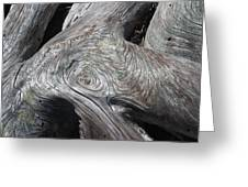 Driftwood Ridges 5 Greeting Card