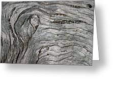 Driftwood Swirls 5 Greeting Card