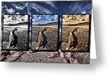 Driftwood Triptych Greeting Card