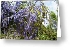 Dripping In Violet Greeting Card
