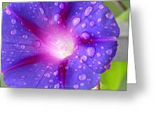 Droplets Glory Greeting Card
