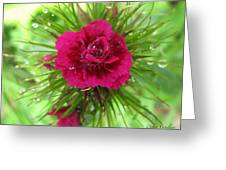 Droplets Of Glass Greeting Card