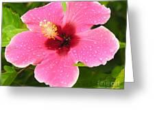 Dropplets Greeting Card