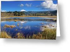 Dry Lagoon Panorama Greeting Card