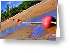 Dry Lake Greeting Card