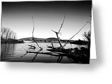 Dryden Lake New York Greeting Card by Paul Ge