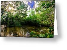 Dubois Park Inlet Greeting Card