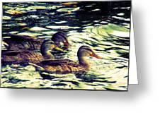 Duck Duck Duck  Greeting Card