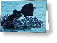 Duck Family Joy In The Lake  Greeting Card by Colette V Hera  Guggenheim