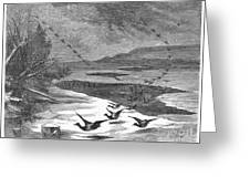 Duck Hunting, 1871 Greeting Card