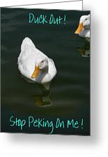 Duck Out - Stop Peking On Me Greeting Card
