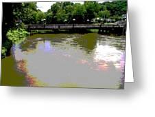 Ducktown Polarized River  Greeting Card
