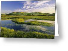 Dune Pond, Brackley, Prince Edward Greeting Card