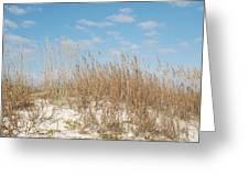 Dune To Sky Greeting Card