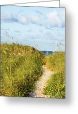 Dune Trail Greeting Card