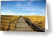 Dune Walkway Greeting Card