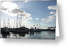 Dunedin Marina  Greeting Card