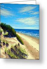 Dunes At Dalvay Greeting Card