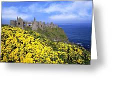 Dunluce Castle, Co. Antrim, Ireland Greeting Card