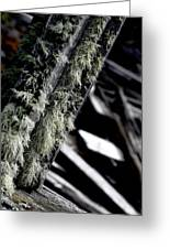 Dunraven Moss Greeting Card