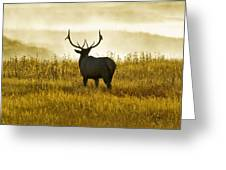 Dusky Elk Greeting Card