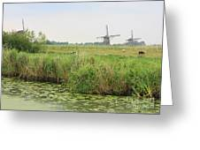 Dutch Landscape With Windmills And Cows Greeting Card
