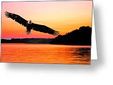 Eagle At Break Of Dawn Greeting Card
