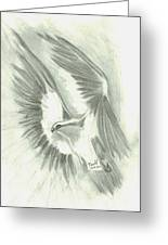 Eagle Flying High Greeting Card