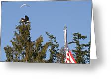Eagle Rallies Round The Flagpole Greeting Card