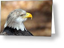 Eagle Right Greeting Card