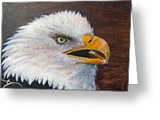 Eagle Study Greeting Card