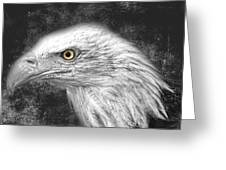Eagle Two Greeting Card