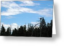 Eagles Nest Lake Tahoe Greeting Card