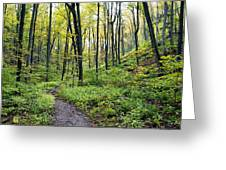 Early Autumn Hike Greeting Card