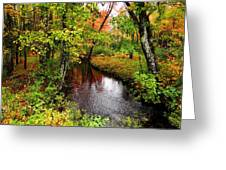 Early Autumn In Maine Greeting Card